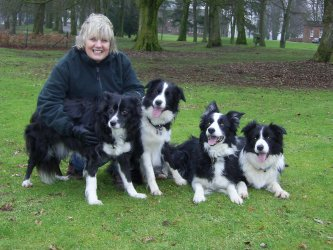 Left to right is Leema, Carole, Inki, Keni and Ghyll (Leema and Ghyll are 2 of Angie Jude's dogs)